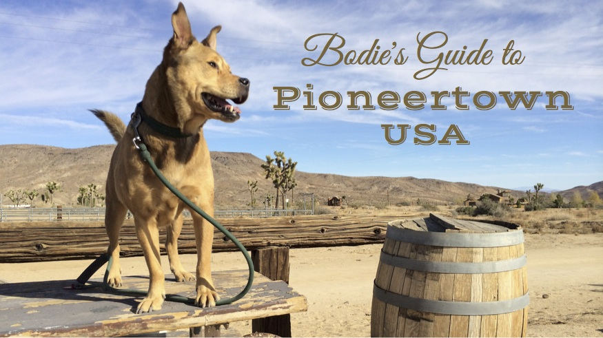 Bodie's Guide to Pioneertown