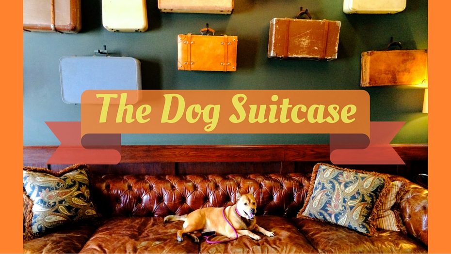 The Dog Suitcase