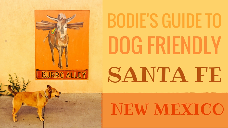 Bodies Guide To Dog Friendly Santa Fe Bodie On The Road