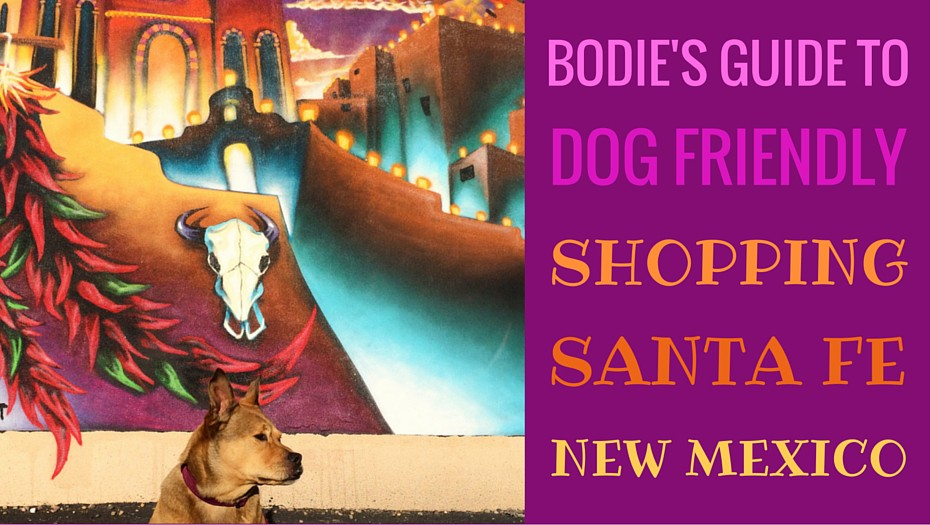 dog-friendly-santafe-shopping-bodie-on-the-road