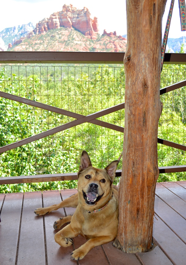 hideaway-house-dog-friendly-deck-sedona-bodie-on-the-road