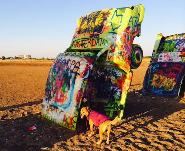 bodie-cadillac-ranch-texas-neoncars