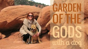 Dog-Friendly Garden of the Gods