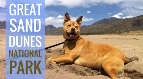 Banner for Bodie at Great Sand Dunes National Park