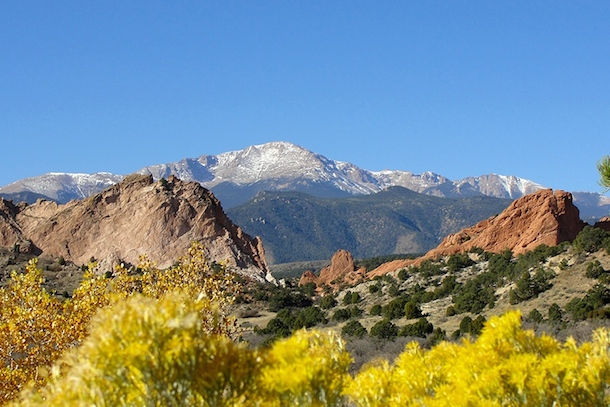 stunning view of dog-friendly garden of the gods with snow capped mountains in the distance and yellow flowers in the foreground