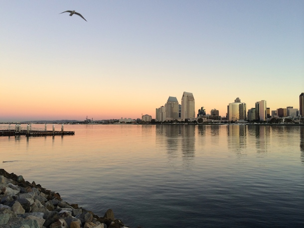 Sunrise in dog-friendly Coronado with a seagull