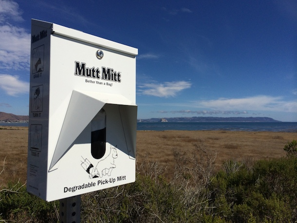 dog poo bag dispenser overlooking morro bay