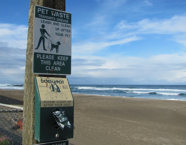 lincoln-beach-oregon-dog-poo-bag