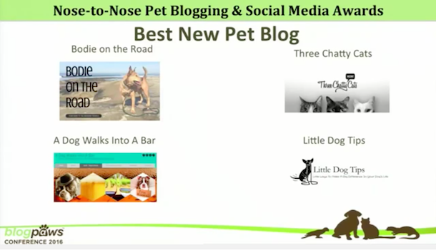 Best-new-pet-blog-nominations-blogpaws-2016