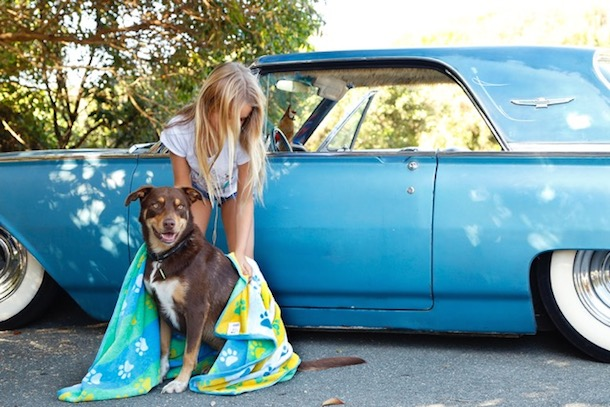 Blonde girl toweling dry her dog beside blue car