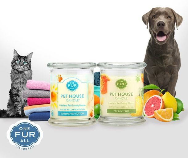 one-fur-all-pet-house-candle-cutest-pet-names-superzoo-2016