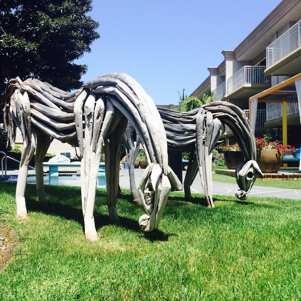 wooden horses beside pool at dog friendly broadstone coronado