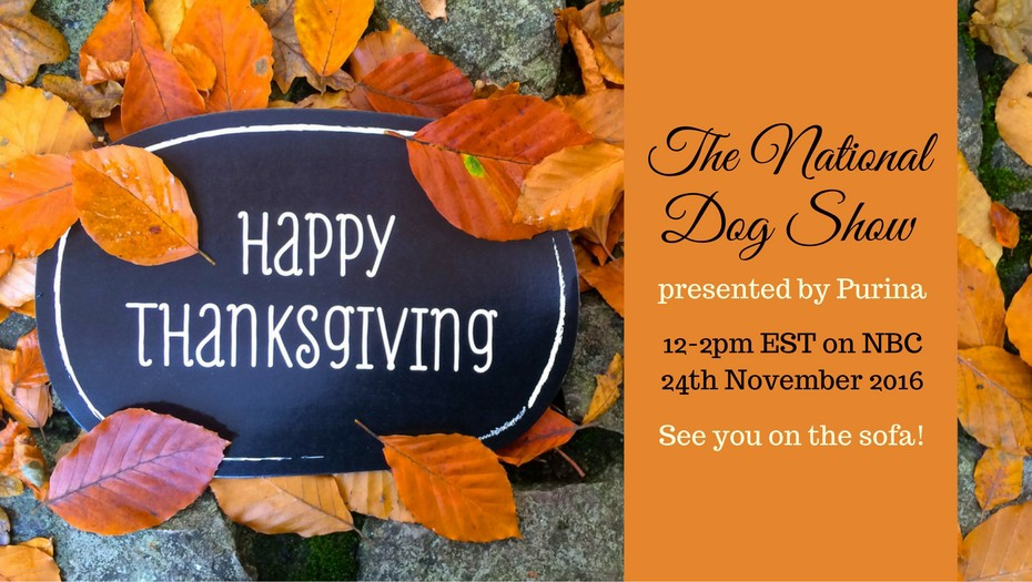 happy-thanksgiving-dogthanking-national-dog-show