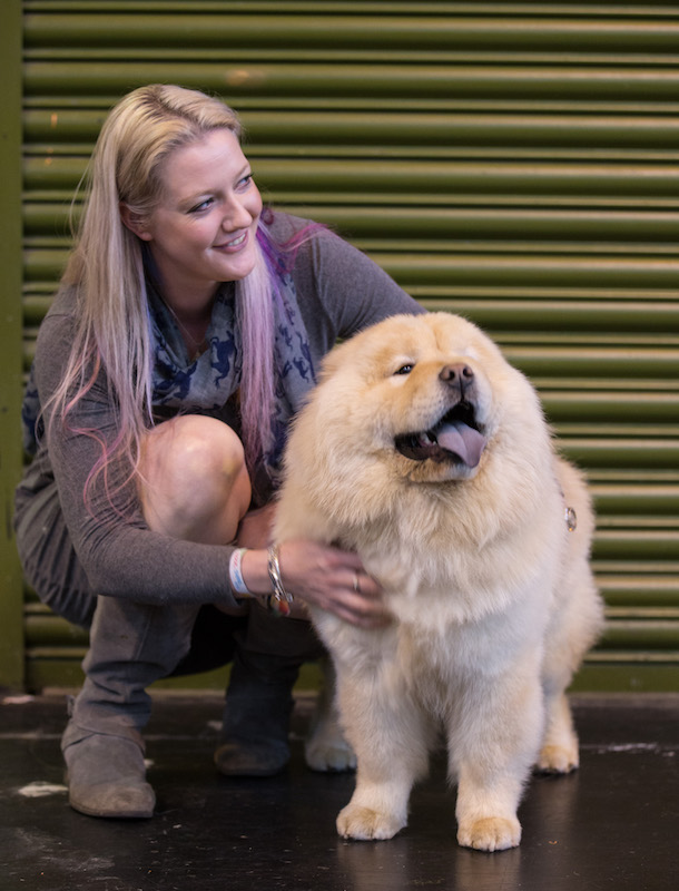 cream chow chow at crafts 2017 with female owner