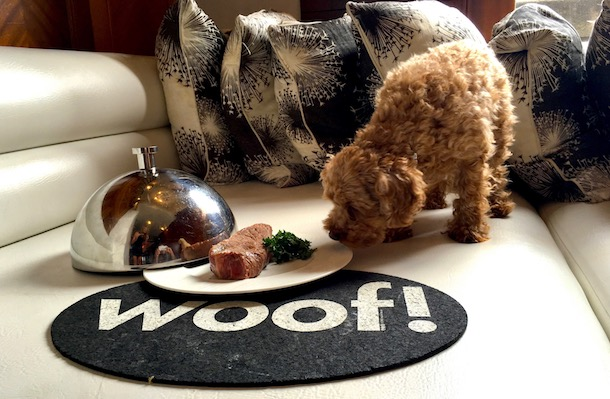 W-Minneapolis-pet-menu-luxury-pet-friendly-resorts 2