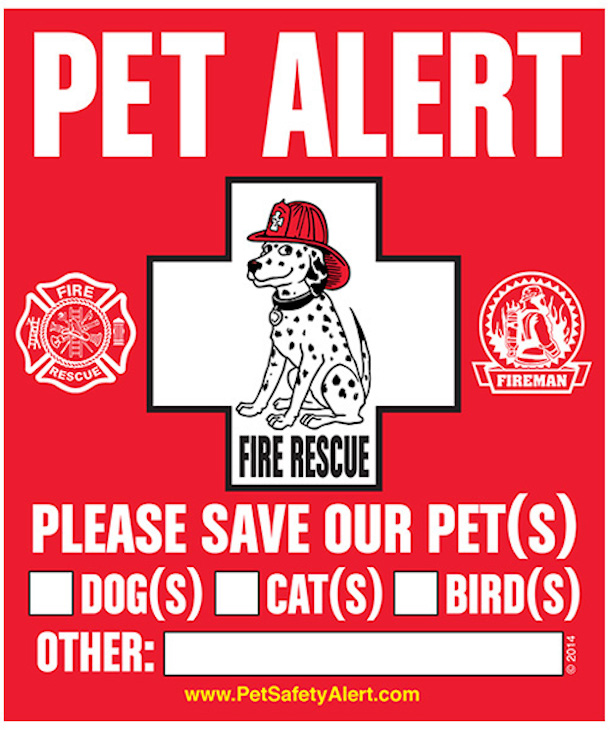 pet alert emergency sticker with dalmatian dog