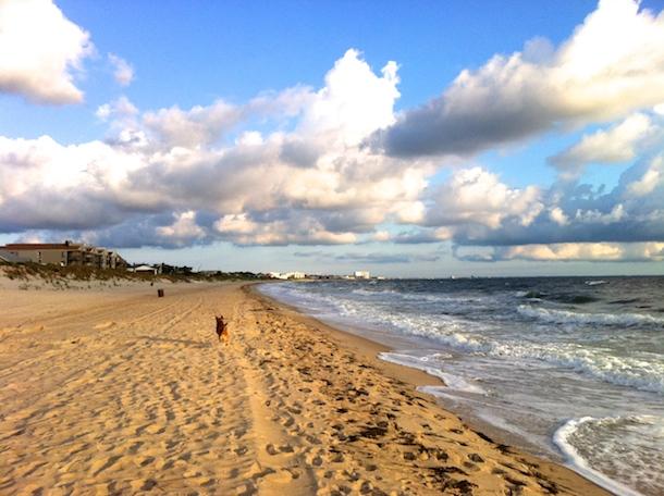 Ocean View Beach Virginia