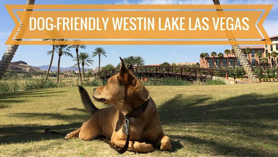 Westin Dog Friendly